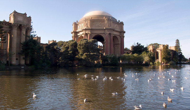 The Palace of Fine Arts on a sunny day with the lake and a flock of birds in the foreground. The dome has an ethereal look from the sunlight shining along the top.
