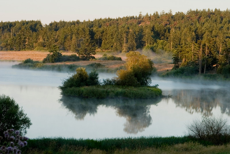 A small lake at dawn on a late summer morning. Tendrils of dawn mist are still visible as it rises from the lake and the glow of the very early morning sun has warmed the color in the trees. This lake is on San Juan Island in Washington State.