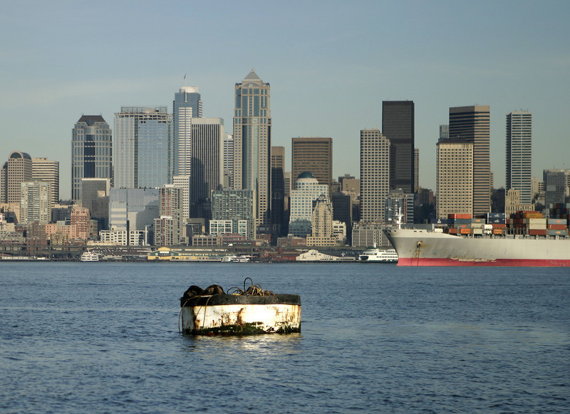 A view of the Seattle skyline from the inner harbor. In the foreground, a seal has pulled itself onto a buoy to get some sun.