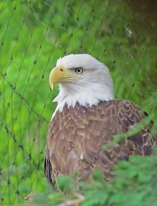 National Zoo