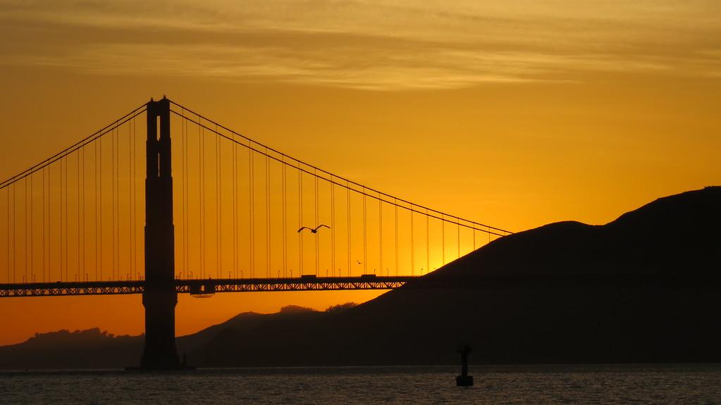 IMAGE: https://photos.smugmug.com/Travel/United-States/US-West-Coast/San-Francisco/San-Francisco-2009/Free-Day-2014-The-Presidio/i-XVPXptJ/1/0aa87fa9/XL/SF_05_2014%20%28652%29-XL.jpg