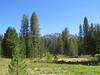 Lomg Meadow