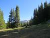 Long Meadow Trail