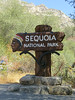 Welcome to Sequoia