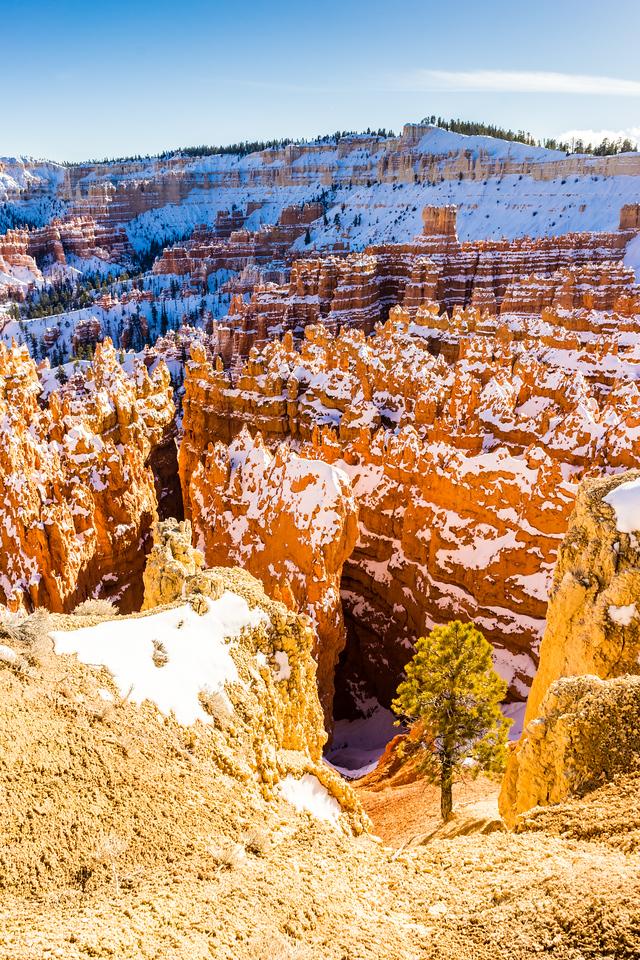 Bryce Canyon, Bryce Canyon National Park, Utah, United States