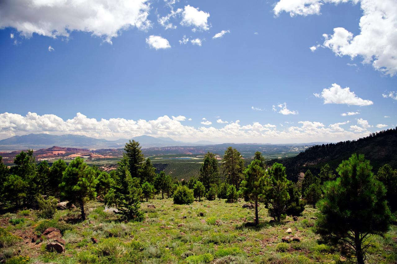 Dixie National Forest, Utah, United States
