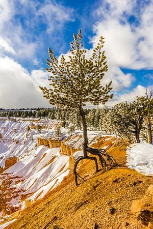 Utah, United States