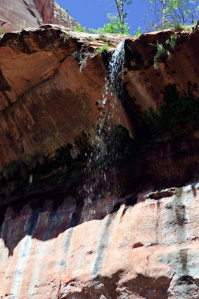 Zion National Park, Utah, United States