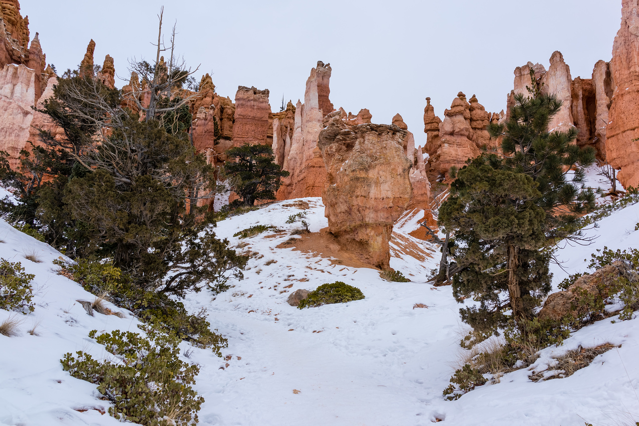 Bryce, Bryce Canyon, Utah, United States