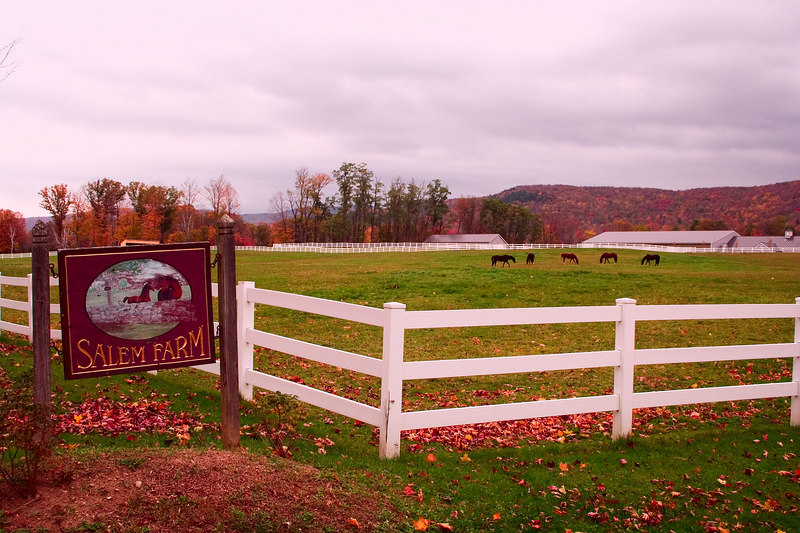 Salem Farm with it's beautiful white fences and horses grazing in the pasture.