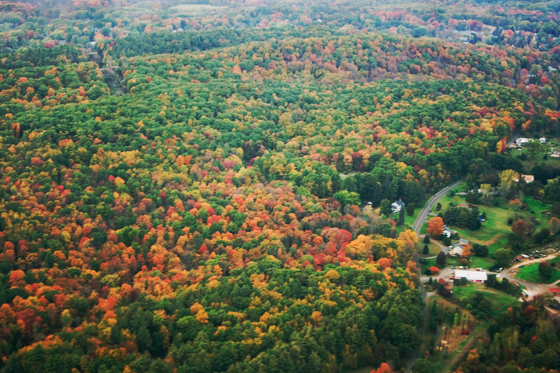 As we approached Hartford, CT we got our first view of the beautiful green trees touched with Fall color.