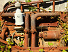 An abandoned and rusty engine is slowly being overgrown by blackberry vines.