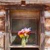 Flower Vase In Window