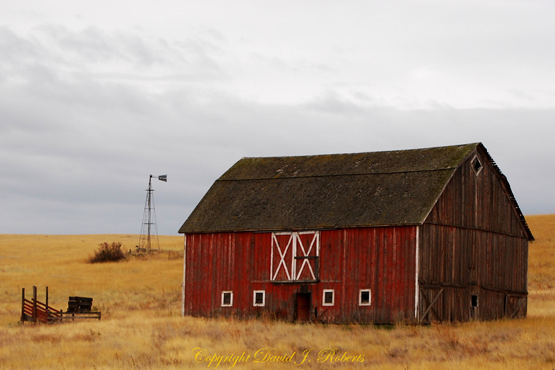 Barn in the Palouse near St John Washington