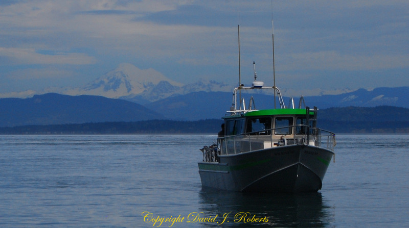 Andiamo at James Island with Mt Baker in background