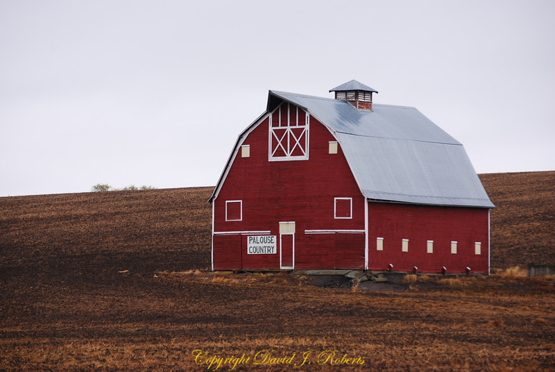 Barn in the Palouse near Colton Washington