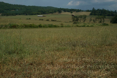 On the farm in Brasstown, North Carolina, where Dillard and Erma Phillips gave me the best summers of my life.