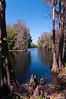 Shingle Creek, Kissimmee