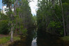 Shingle Creek, Headwaters of the Everglades