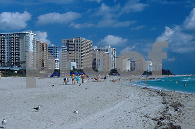 The sunny beachs of Miami, FL.