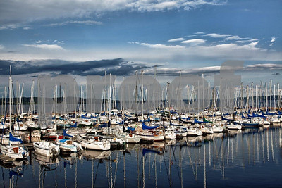 The marina in Lake City, MN.