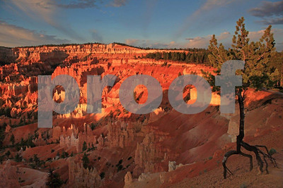 """Bryce National Park"" , Sunrise, 1381"