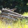 Remains of a homestead at Log Slide