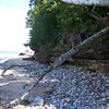 Twelvemile beach is a rock hunter's paradise.