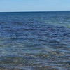 """Remains of the wrecked """"Mary Jarecki"""". It is the first shipwreck visible along the lakeshore from Twelvemile Beach campground on the trail to Au Sable Point. Long oak keelsons remain visible through the water."""