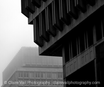 City Hall & Fog