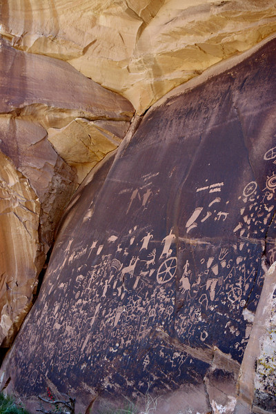 Newspaper Rock State Historic Site, where ancient (and not-so-ancient) petroglyphs have been pecked into the desert varnish. Utah 211 just north of the Abajo Mountains.