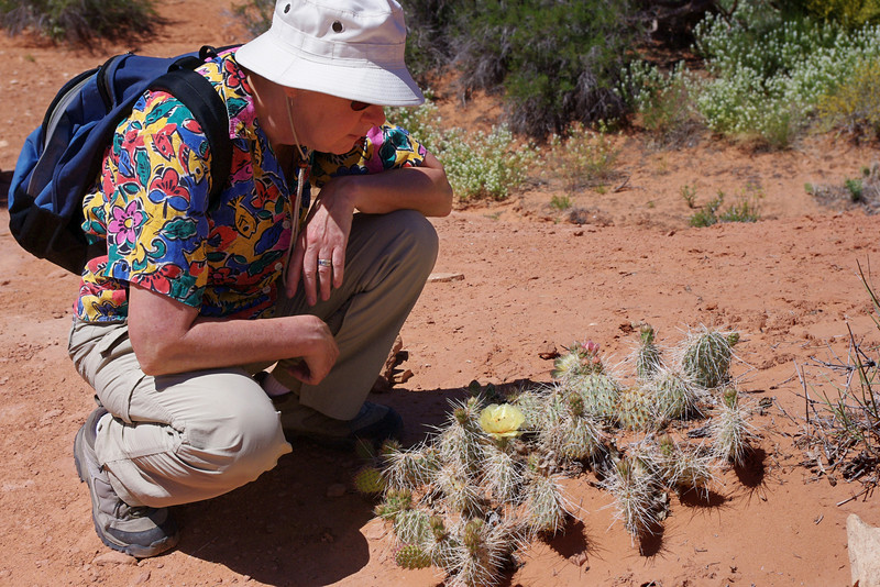 Rita looking at cacti on the trail to Tower Arch. What did I tell you about those hats?