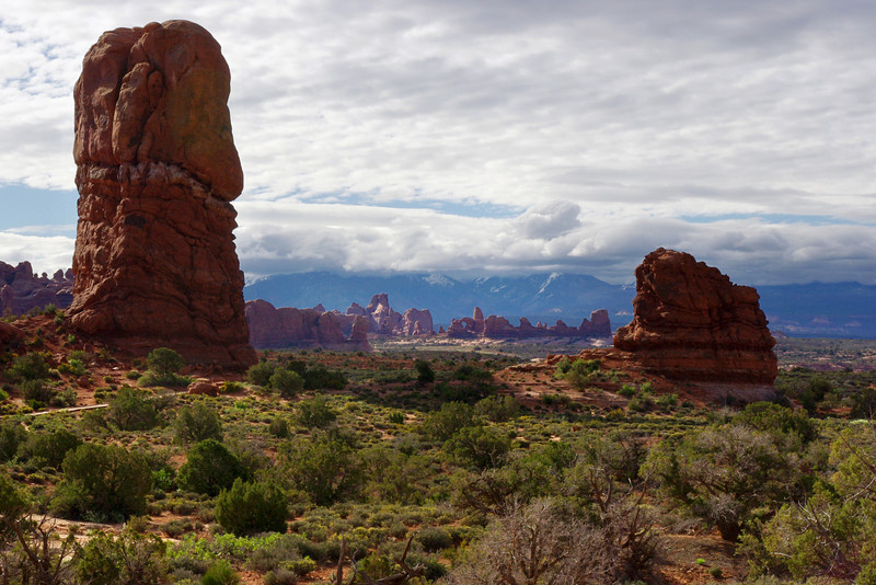 Desert scenery, Arches National Park, Utah. I believe this was at the Balanced Rock pull out.