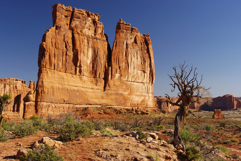 The Organ formation; Arches National Park, Utah.