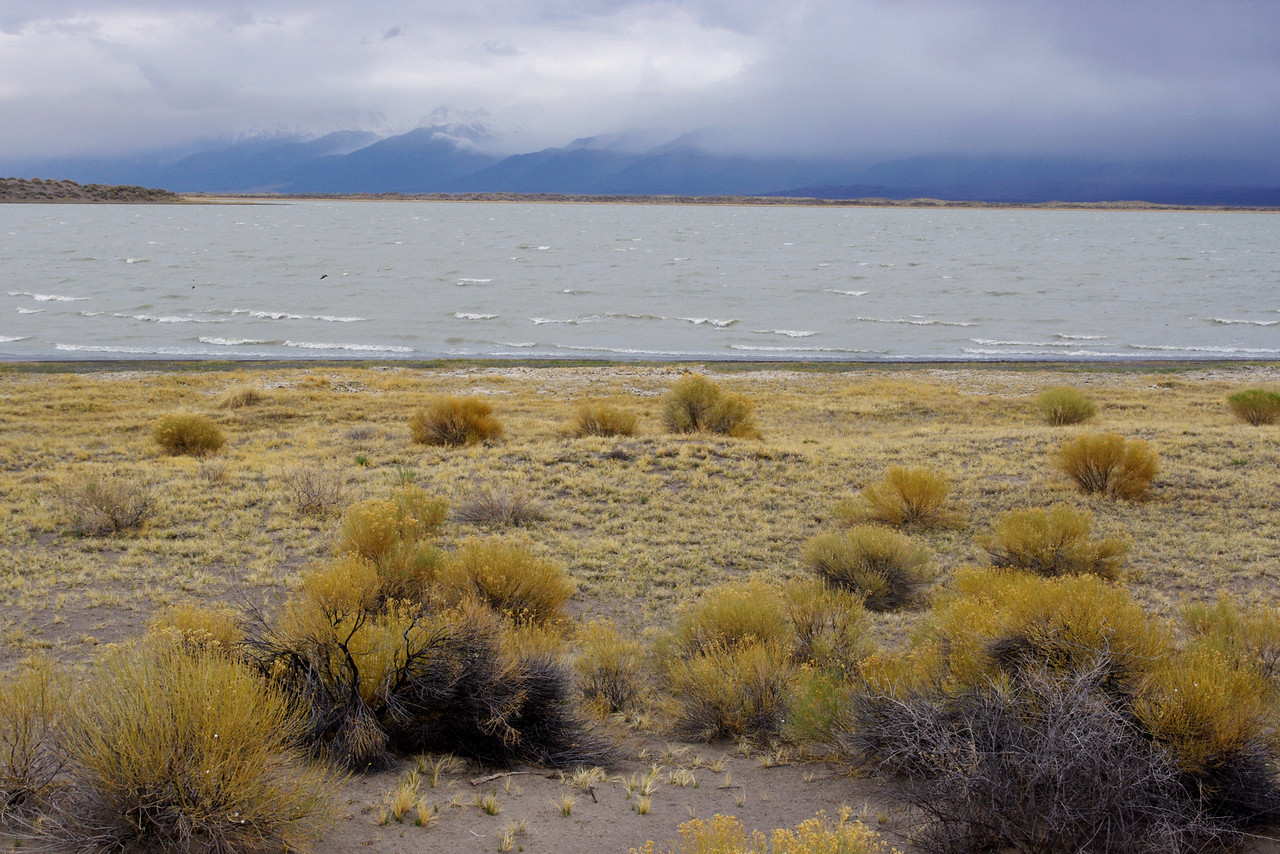 San Luis Lake, Colorado. It was so windy here, I  imagined that all I would need to become airborne would be a poncho or table cloth to act as a para-sail.