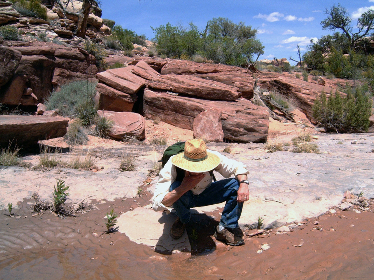 Gary, cooling his brow in a pool in Elephant Canyon, on the way to Chesler Park.