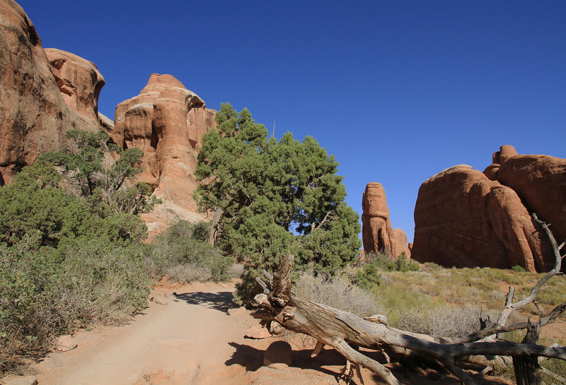 Devil's Garden trail en route to Landscape Arch.