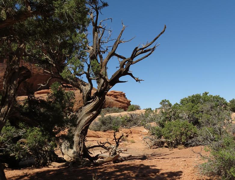 Arches National Park: September 9, 2012