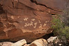 Ute Pictographs near the Wolfe cabin.  These appear to include horses and riders.