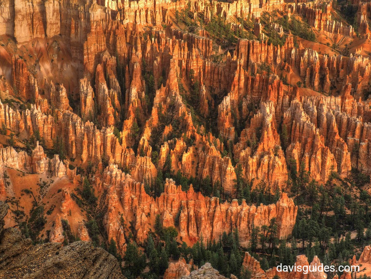 Hoodoos beneath Bryce Point, Bryce Canyon National Park