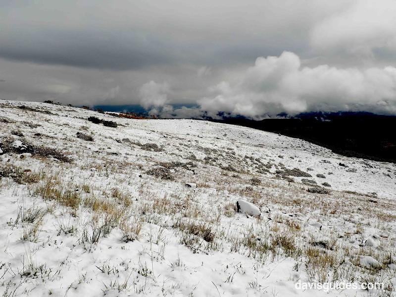 Snow along Scenic Hwy 12 above Boulder Utah