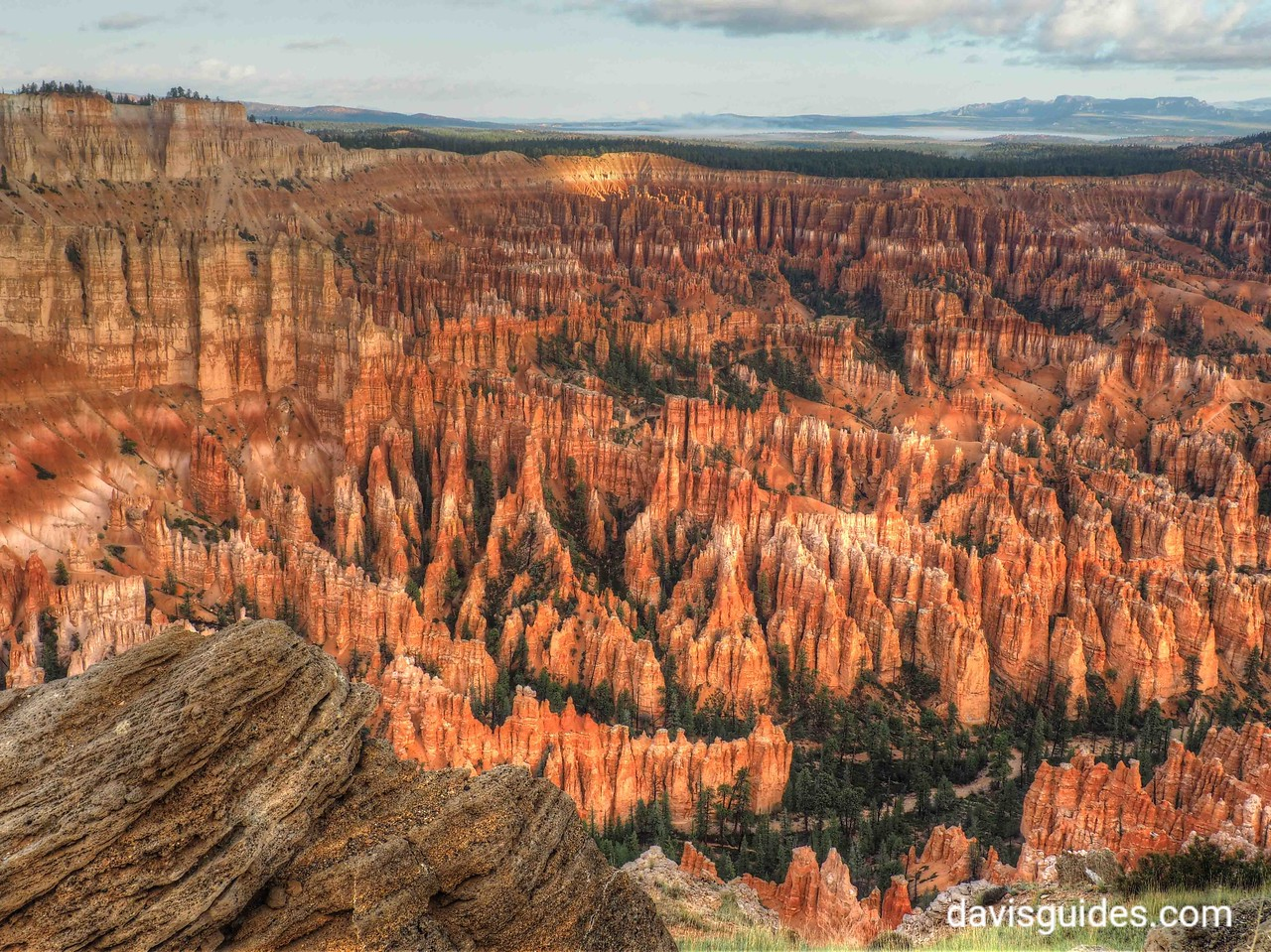 Hoodoos in Morning light at Bryce Point, Bryce Canyon National Park