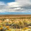 Antelope Island and Great Salt Lake