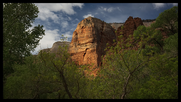 Early Morning Light.  Zion NP