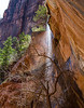 Waterfall at Lower Emerald Pool, Emerald Pools Trail, Zion National Park, Utah.