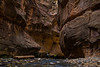 Narrows Canyon, Zion National Park. Adam and Giselle, a friendly couple I met along the Virgin River hike, make their way upstream into the canyon.