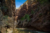 Especially scenic were the Virgin River sections where trees cling to the canyon walls. Zion National Park.