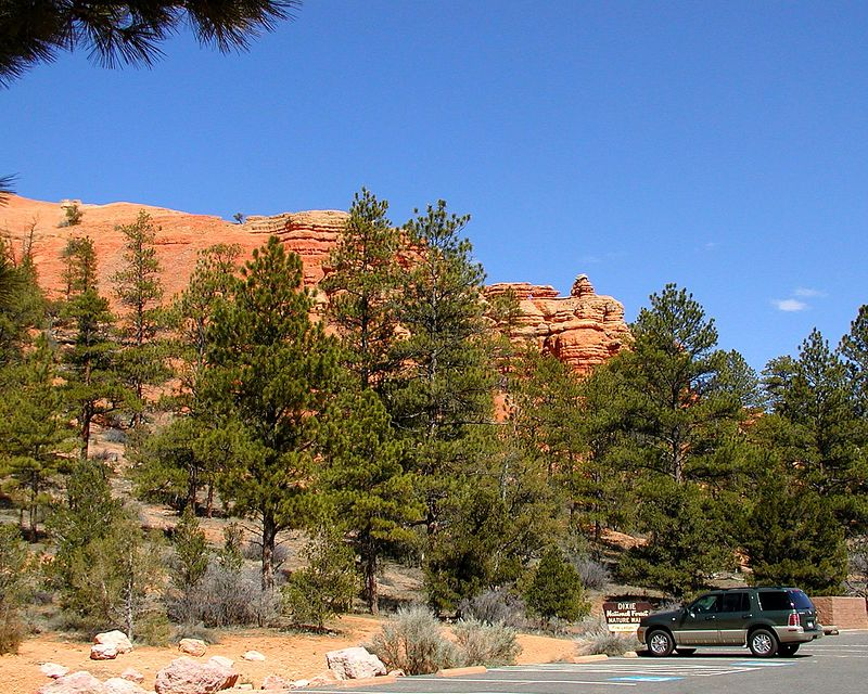 Red Canyon (Dixie National Forest) - a warmup for Bryce Canyon
