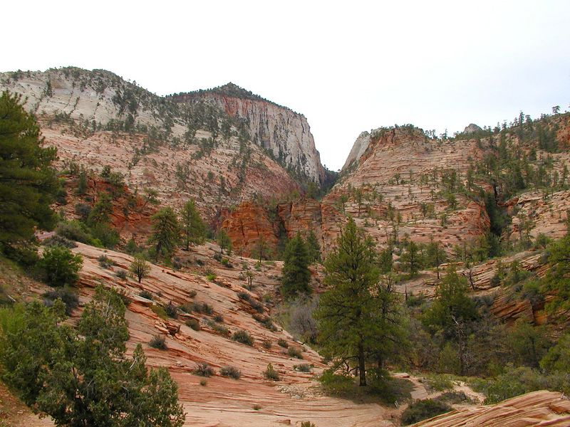Along Utah  Route 9 through Zion National Park from the east