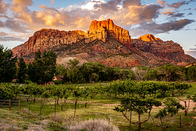 Springdale Utah, near Zion National Park